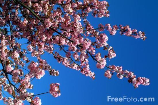 19_10_11-spring_web.jpg