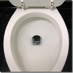cellphone in toilet bowl