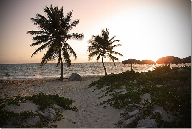 Tropical_beach_sunset