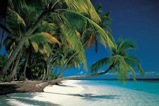 Deserted Tropical Island: 2012 June 03 « Tech