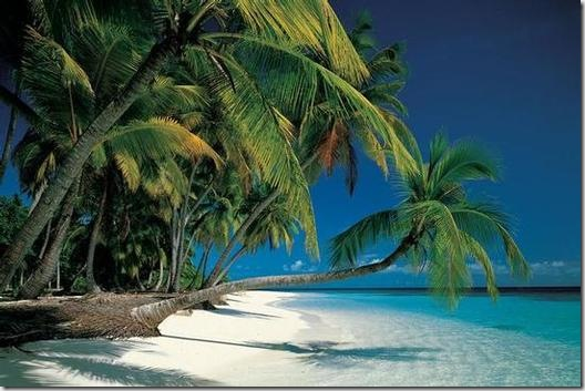 Tropical_Beach