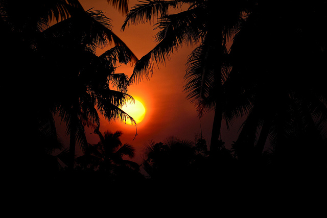 photo tropical sunrise