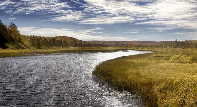 image scenic river in autumn